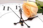 Roses and wall clock — Stock Photo