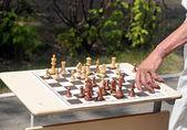 Schachfiguren auf einem tisch im park — Stockfoto