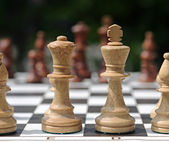 White chess pieces on the board — Stock fotografie