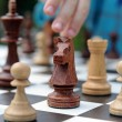 Stock Photo: Black knight chess piece on background