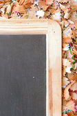 Part of school boards bordered with shavings from pencils — Stockfoto