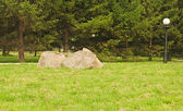 Big stone on green grass — Stock Photo