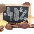 Autumn discount. Forty percent written on blackboard — Stock Photo