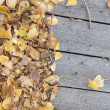 Autumn leaves on wooden background with copy space — Стоковая фотография