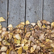 Autumn leaves on wooden background with copy space — Stock Photo