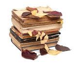 秋の葉と白い背景の上の書籍の古いスタックします。 — ストック写真