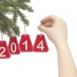 Woman hand hanging a number 2014 on fir tree branch — Stock Photo