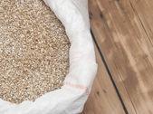 大麦豆。颗粒的麦芽特写。粮食和农业的浓 — 图库照片