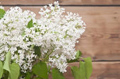 Lilac flowers on rustic background  — Stock fotografie