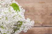 Lilac flowers on rustic background  — Stock Photo