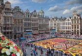 Flower Carpet in Grand Place of Brussels — Stock Photo