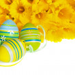 Green and Blue Striped Easter Eggs with Yellow Daffodils on White Background — Stock Photo