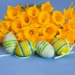 Painted Easter Eggs and Yellow Daffodils on Blue Background — Stock Photo