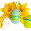 Three Isolated Colorful Easter Eggs Against Yellow Daffodils — Stock Photo