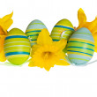 Isolated Easter Eggs and Yellow Daffodil Flowers in a Row — Stock Photo #39722291