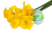 Isolated Blue Easter Egg with Green Stripes Leaned on Yellow Daffodils — Stock Photo