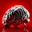 Human brain — Stock Photo