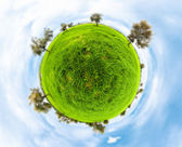 Little planet with clear thick grass lawn — Stock Photo