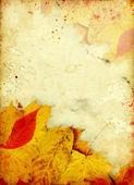 ビンテージ秋の背景 — ストック写真