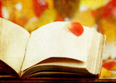 Vintage autumn background with a book — Stock Photo