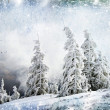 Christmas background with snowy fir trees — Foto de Stock