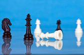 Pièces d'échecs — Photo