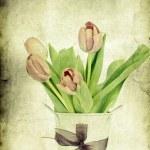 Vintage tulips — Stock Photo #25806955
