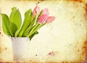 Vintage tulips — Stock Photo