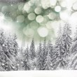 Christmas winter landscape — Stock Photo