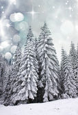 Wintertime in the mountains — Stock Photo