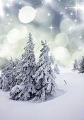 Christmas background with snowy fir trees — Stockfoto