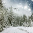 Winter landscape with snow covered road — Stock Photo