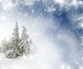 Christmas background with stars and snowy fir trees — Stock Photo