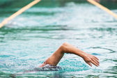 Swimmer in the olimpic pool — Stock Photo