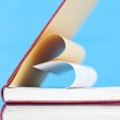 Close up on heart shaped book pages — Stock Photo #39802055
