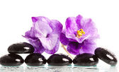 Spa treatment massage stones and violet flower — Stock Photo