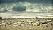 Piedras en la playa — Foto de Stock