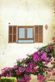 Finestra con persiane in legno aperti — Foto Stock