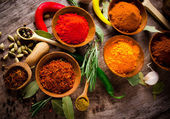 Diverse kryddor — Stockfoto