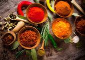 Geassorteerde specerijen — Stockfoto