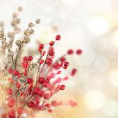 Vánoční zlaté a červené dekorace — Stock fotografie