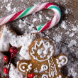 Traditional gingerbread cookies — Stock Photo