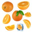 Stock Photo: Oranges collection