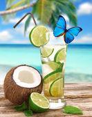 Fresh mojito cocktail — Stock Photo