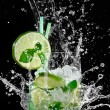 Mojito cocktail — Stock Photo #20321373
