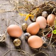 Colorful easter eggs — Stock Photo #20758165