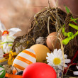 Colorful easter eggs — Stock Photo #20758213