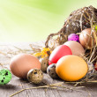 Colorful easter eggs — Stock Photo #21251197