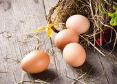 鸡蛋 — 图库照片