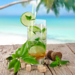 Mojito cocktail — Stock Photo